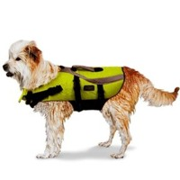 Finding the Best Dog Life Vest